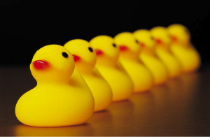 Get your ducks in a row before starting your LLC